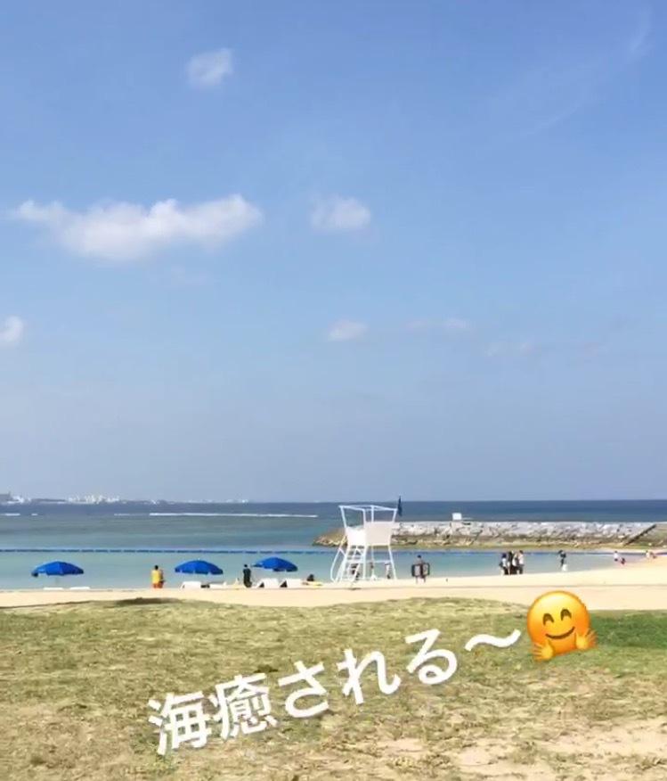 夏が来た!!!の写真