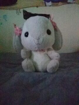 『私の友達』の写真
